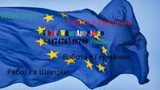Работа в странах Европы
